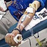 תורמים דם להצלת טל פלח בן ה-5