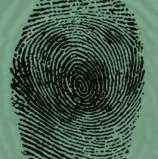 הוסרו המכשולים לאישור חוק הביומטריה: שר הפנים יוסמך להחליט על הקמת מאגרי מידע נפרדים