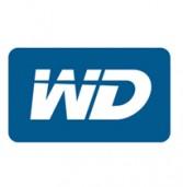 Western Digital רכשה את Virident Systems תמורת 685 מיליון דולרים