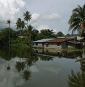 הערכה: השיטפונות בתאילנד ישפיעו על שוק הכוננים הקשיחים