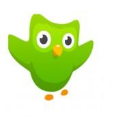 Duolingo: האפליקציה שתוציא אתכם עם שפה חדשה