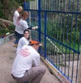 אנשי CSR ישראל ביצעו פרויקטים למען הקהילה בחיפה