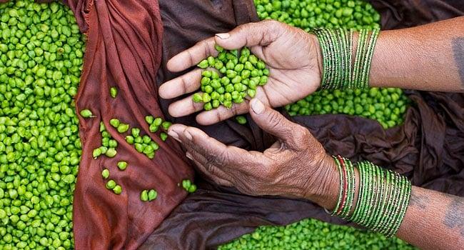 במקום העשירי: ידיה של מוכרת רחוב הודית מציגות חומוס ירוק. צילום: חורחה רויאן