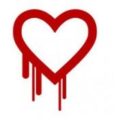 באג חדש ב-OpenSSL עלול לחשוף סיסמאות מוצפנות; מהווה סכנה לשני שלישים מהאתרים