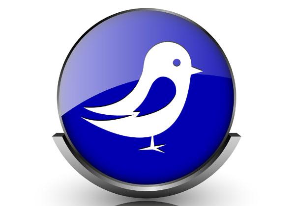 בקרוב הציפור תתחיל למכור. איור: Bigstock