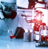 מיקרוסופט תספק כלי IT לסיוע במאבק להדברת האבולה