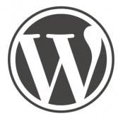 וורדפרס וגוגל יציעו יחד מערכת ניהול תוכן לאתרי חדשות מקומיים