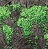 המשרד להגנת הסביבה יוצא לפרויקט IT חברתי
