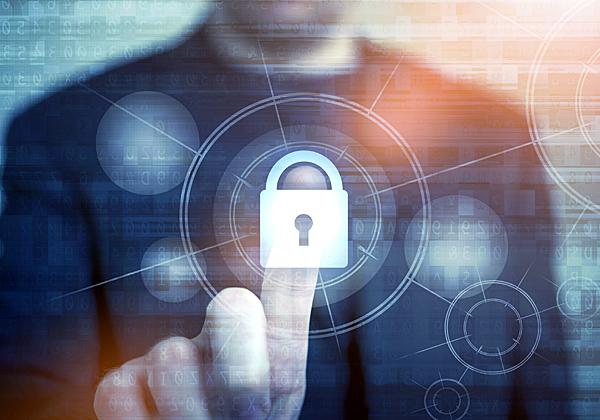 בידי מי נתונה הגנת הפרטיות שלנו? אילוסטרציה: BigStock
