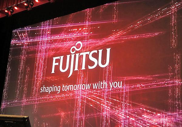 המוטו של פוג'יטסו: לשתף את הלקוח ביצירת הפתרונות שלו, הלכה למעשה. צילום: פלי הנמר