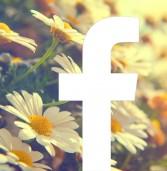 פייסבוק הוסיפה ברכות עונתיות בראש אוסף החדשות