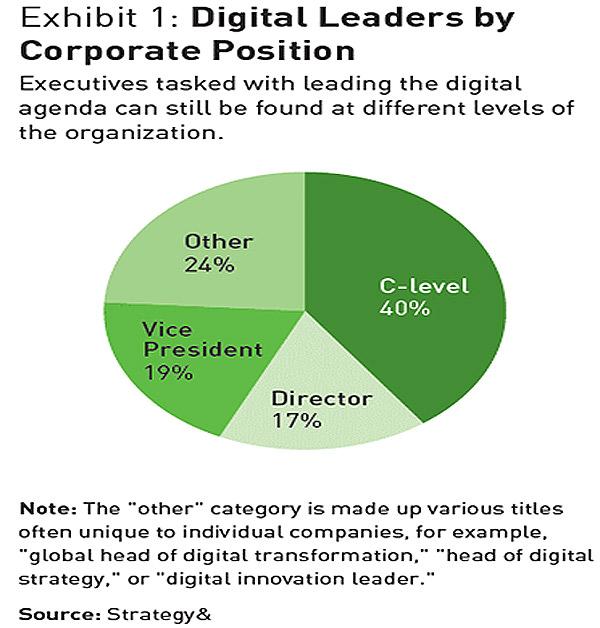 התפלגות המובילים הדיגיטליים לפי דרג הדיווח