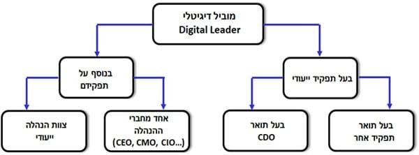 צורות מימוש שונות של תפקיד המוביל הדיגיטלי