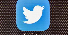 תקיפת ענק על טוויטר. אילוסטרציה: BigStock
