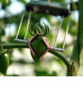 סופלנט הישראלית מביאה חקלאות חכמה לרחבי העולם