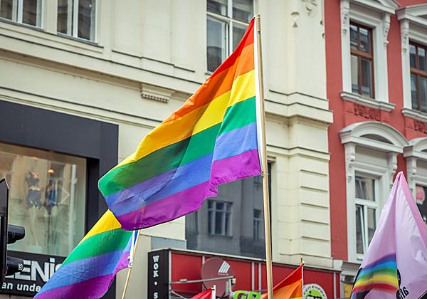 דגל הגאווה. צילום אילוסטרציה: BigStock