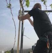 בראשונה בישראל: תשתית ווב מבוססת גלים מילימטריים – בעוספיה