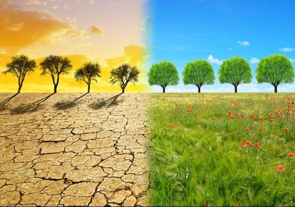 גם ענקיות הטכנולוגיה יתחייבו להילחם במשבר האקלים. אילוסטרציה: BigStock