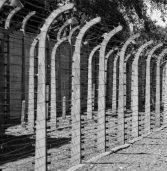 """""""בעזרת הטכנולוגיה נגדיל את טווח זיכרון השואה לעוד הרבה שנים"""""""