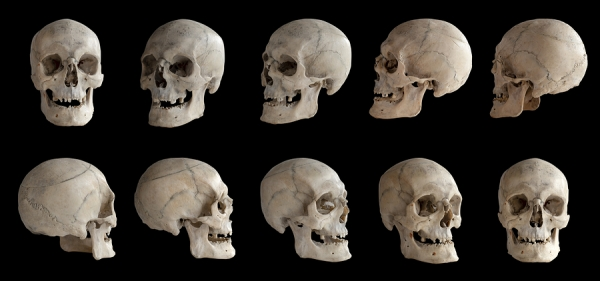 האם הגולולת האנושית משתנה? צילום אילוסטרציה: BigStock