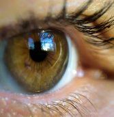 פיתוח חדש: עדשות מגע המפקסות ראייה באובייקט בעזרת מצמוץ פעמיים