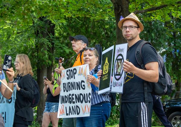 פעילים למען איכות הסביבה מוחים על בירוא יערות באמזונס. צילום: BigStock