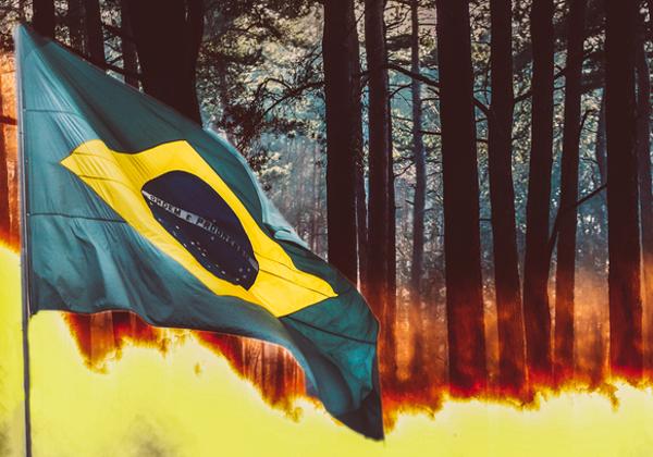 השריפה ביערות הגשם באמזונס בברזיל. צילום אילוסטרציה: BigStock