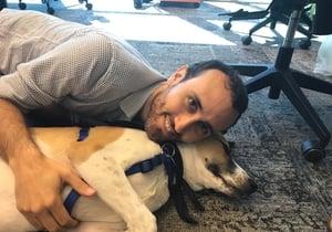 """עדי הרוש, סמנכ""""ל טכנולוגיות בפאבפלוס, משתעשע עם פרנסיס, הכלב של נוי. צילום: פאבפלוס"""
