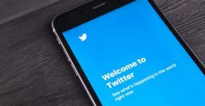 בלי ציוצים נעלמים בטוויטר. צילום: BigStock