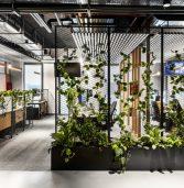פלייטיקה מתרחבת בישראל: מגייסת 100 עובדים ושוכרת משרדים חדשים