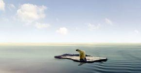 דב קוטב שנתקע על קרחון. משבר האקלים. צילום אילוסטרציה: BigStock