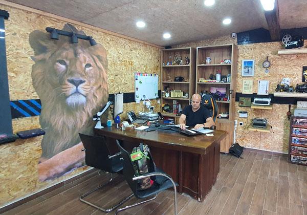האריה הגדול שעל הקיר מאבטח את אייל עסילה האריה במאורתו. שמצדו מאבטח את המידע. צילום: פלי הנמר