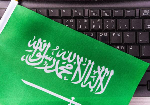 קרן סעודית - בעלת מניות בפייסבוק. צילום אילוסטרציה: BigStock