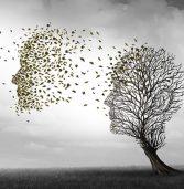 יבמ: מערכת AI שפיתחנו צופה התפרצות אלצהיימר טוב יותר מבדיקות סטנדרטיות