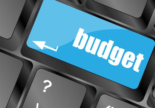 הוצאות ה-IT: תקציב לא יציב. מקור: BigStock