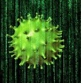 מחקר: הקורונה ייצרה צונאמי של מתקפות DDoS והשתלטות על חשבונות