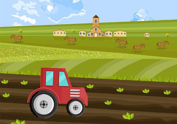 היו זמנים בפייסבוק. FarmVille. צילום: BigStock