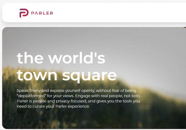 בית הנבחרים דורש חקירה נגד פארלה. צילום מסך מהאתר
