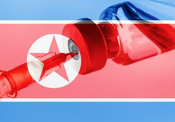 חדירות סייבר מצפון קוריאה, עד שהמדינה תקבל חיסונים. המעורבים בייצור, הפצה ומחקר חיסונים. צילום אילוסטרציה: BigStock