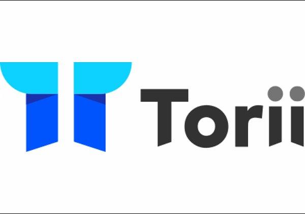 ניהול של פלטפורמות ארגוניות של תוכנה כשירות (SaaS). טורי