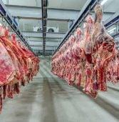 JBS – ענקית הבשר שהותקפה בסייבר – שילמה 11 מיליון ד' כדמי כופר