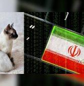 חשיפה: האיראנים תקפו חברות IT ישראליות